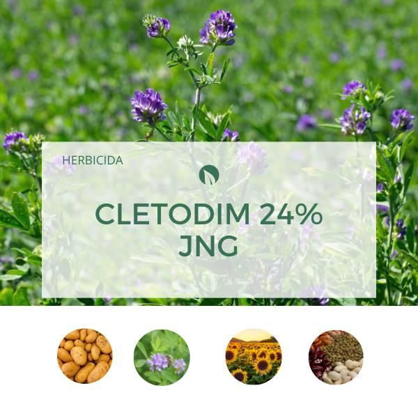 Cletodim 24% JNG