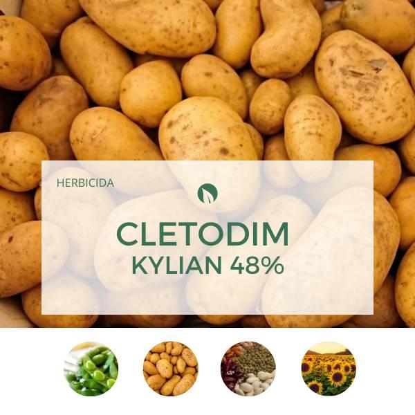 Cletodim KYLIAN 48%
