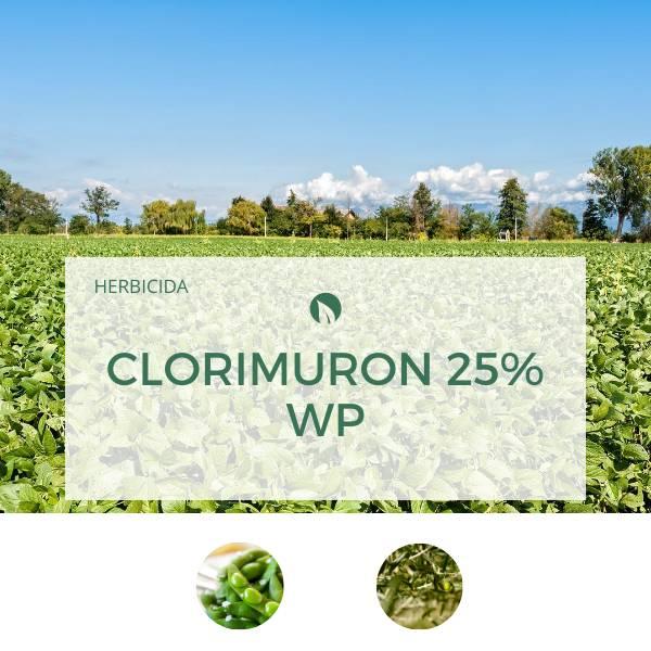 Clorimuron 25% WP