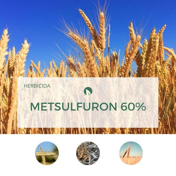 Metsulfuron 60%