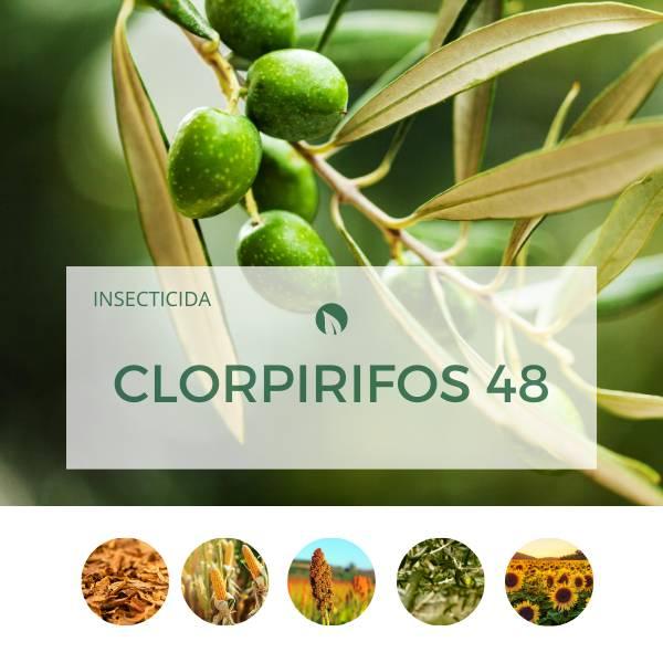 Clorpirifos 48