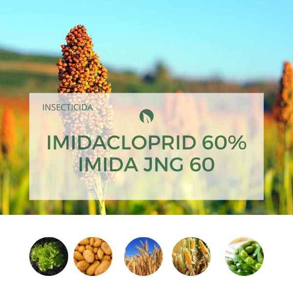 Imidacloprid 60% IMIDA JNG 60